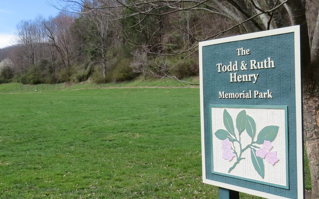 The Todd and Ruth Henry Park